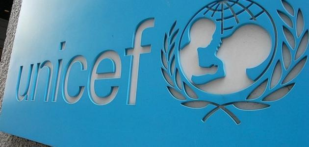 مفهوم منظمة الأمم المتحدة