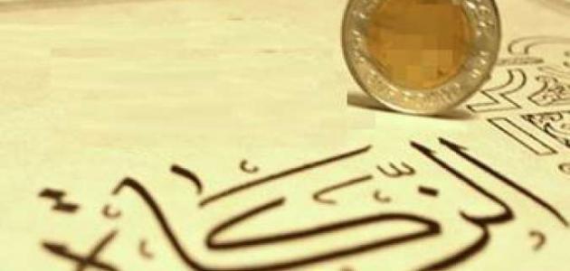 مفهوم الزكاة في الإسلام