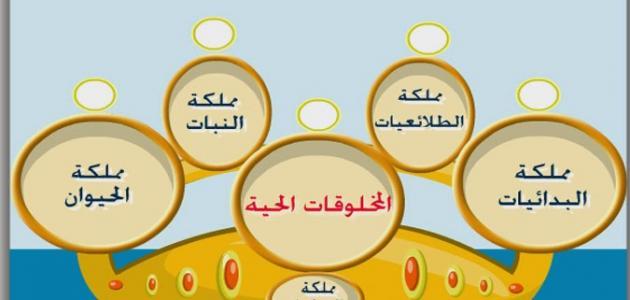 مفهوم علم التصنيف