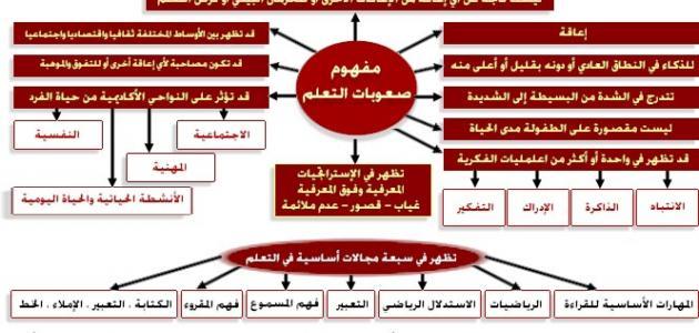 مسيرة التربية الخاصة في المملكة العربية السعودية pdf