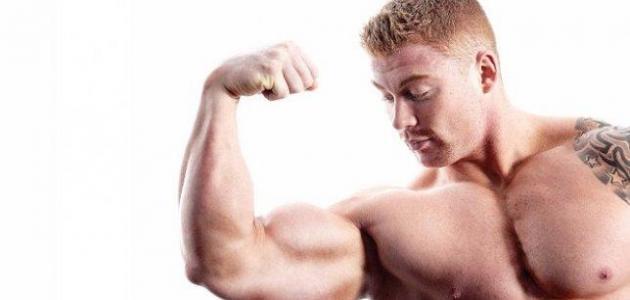 كيفية بناء عضلات