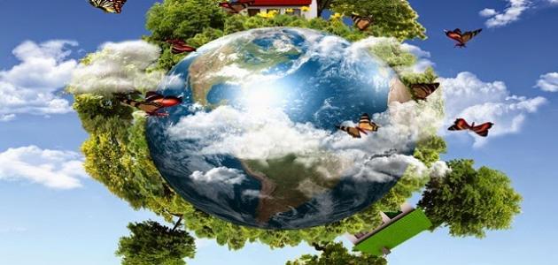 مفهوم البيئة والنظام البيئي