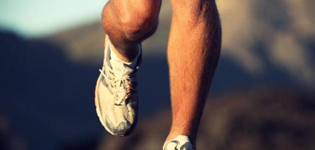 مفهوم رياضة الجلد