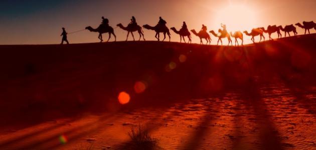 أقوال العرب