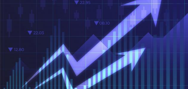 مقومات الاقتصاد بصفة عامة