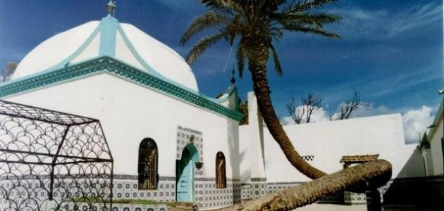معوقات السياحة في الجزائر
