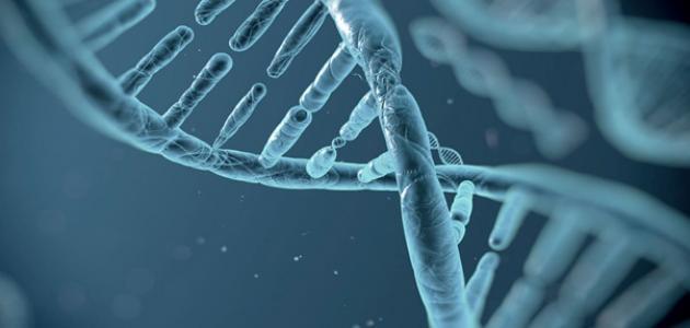 مفهوم علم الأحياء