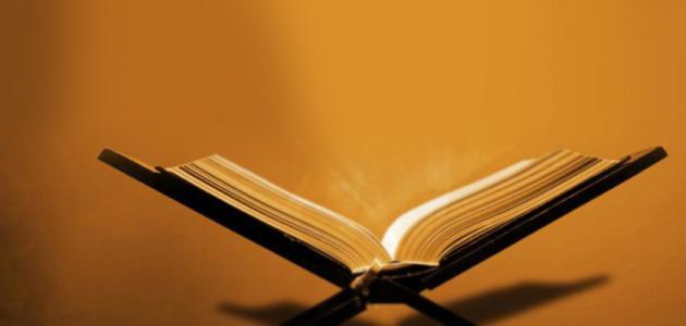 مفهوم العقيدة والشريعة والسلوك