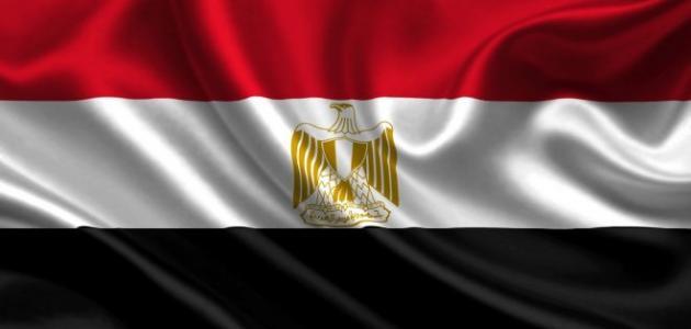مقالة عن حب مصر