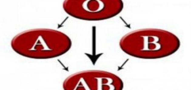 شرح فصائل الدم
