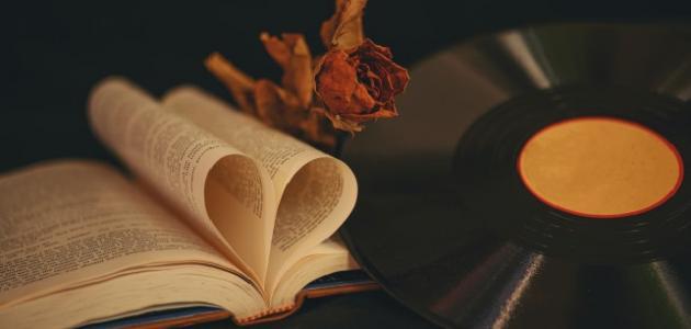 مفهوم كلمة الحب