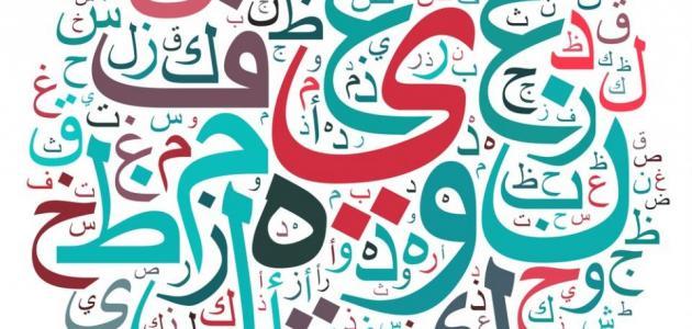 من غرائب وعجائب اللغة العربية