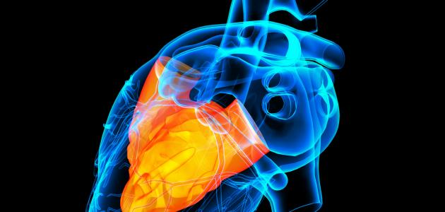 ما سبب دقات القلب السريعة