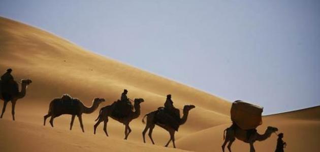 مفهوم أدب الرحلة