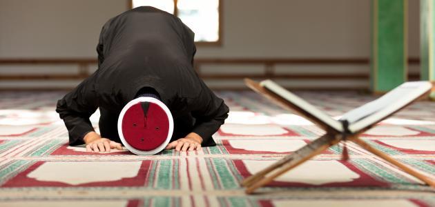 كيف تصلى صلاة تحية المسجد