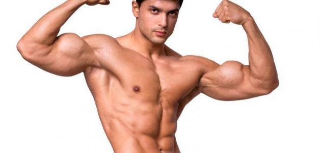 مفهوم القوة العضلية