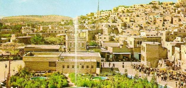 عدد سكان مدينة الخليل