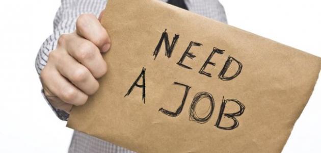 كيف أبحث عن عمل