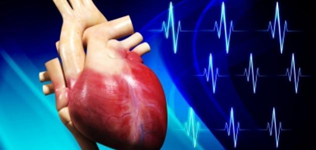 مكونات القلب في جسم الإنسان مكونات_القلب_في_جسم_الإنسان
