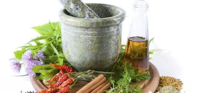 علاج القمل نهائياً بالأعشاب