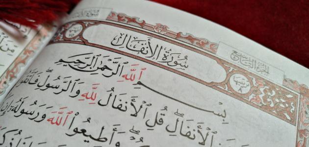 القرآن تدبر وعمل صفحة رقم
