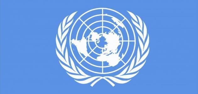 بحث حول هيئة الأمم المتحدة