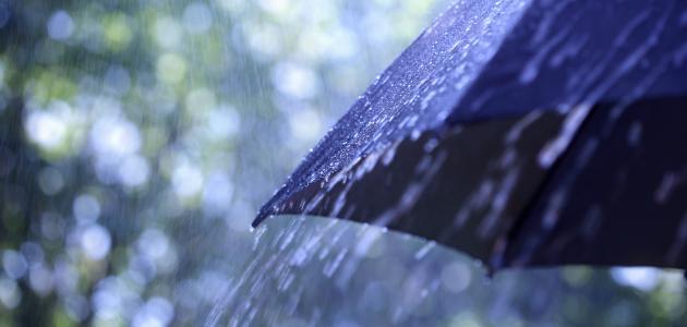كيف يهطل المطر