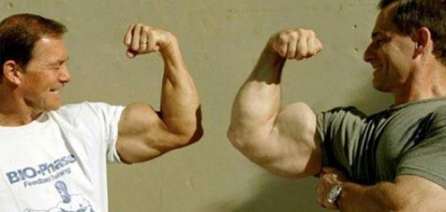 ما هي أكبر عضلة في جسم الإنسان