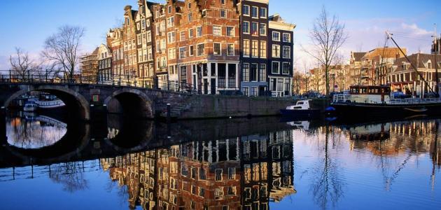 ما هي لغة هولندا