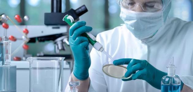 أهمية العلوم والثقافة العلمية فى حياتنا