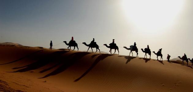 كيف كانت الصحراء قديماً