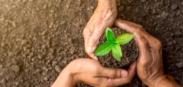 بحث حول حماية البيئة وحقوق الإنسان - موضوع