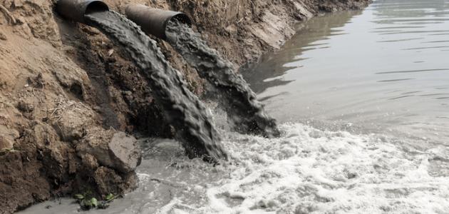 معلومات عن تلوث الماء