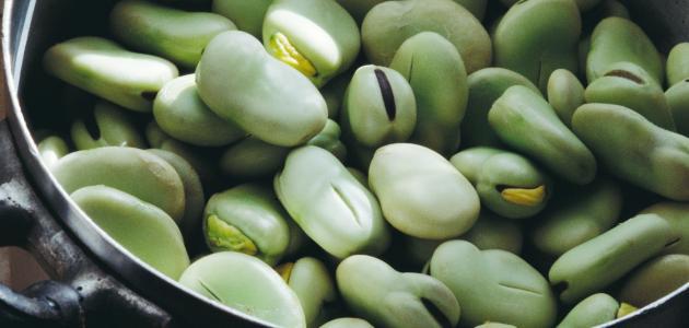 كيف أفرز الفول الأخضر