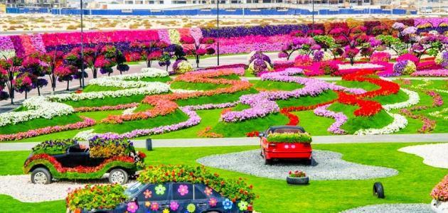 حديقة الزهور الاماكن السياحية في دبي الامارات