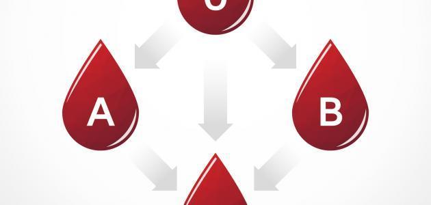 الفرق بين فصائل الدم