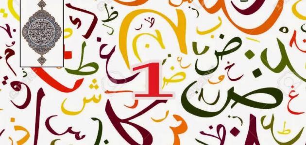 معلومات عامة في اللغة العربية