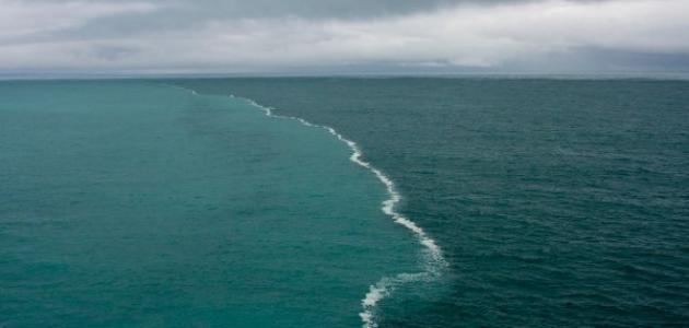 كم تبلغ كثافة الماء