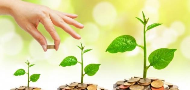مصادر تمويل المشاريع الصغيرة
