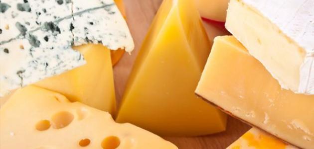 صناعة الجبنة الرومي