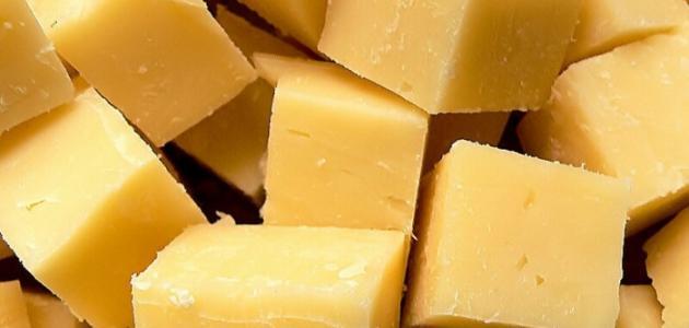 فوائد الجبنة