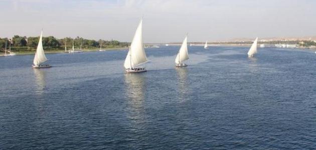 تقرير عن نهر النيل