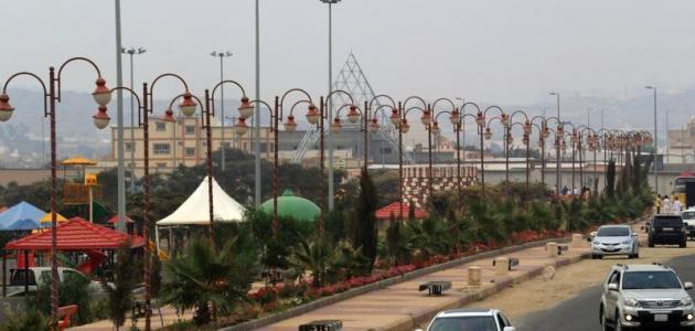 محافظة تنومة