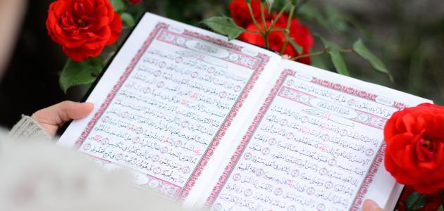 معلومات عن القرآن الكريم وعلومه