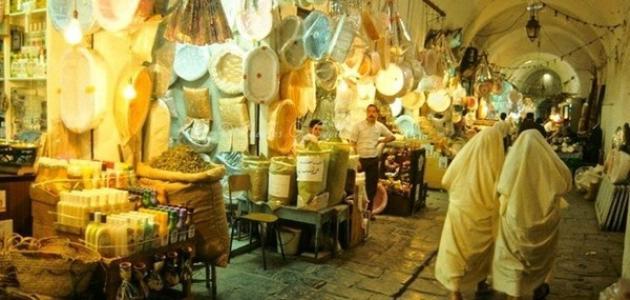 وصف مدينة تونس