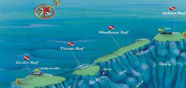 أهم الجزر في البحر الأحمر