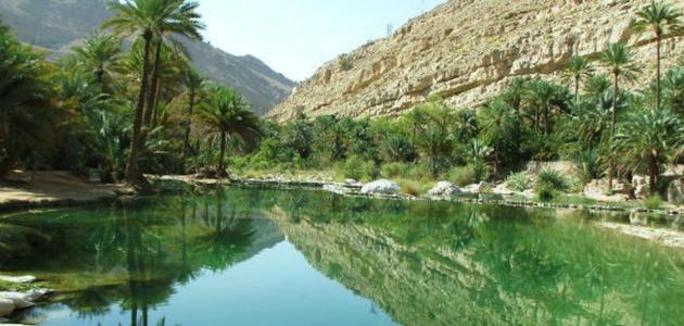 سلطنة عمان وصلالة