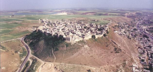 موقع مدينة حماة