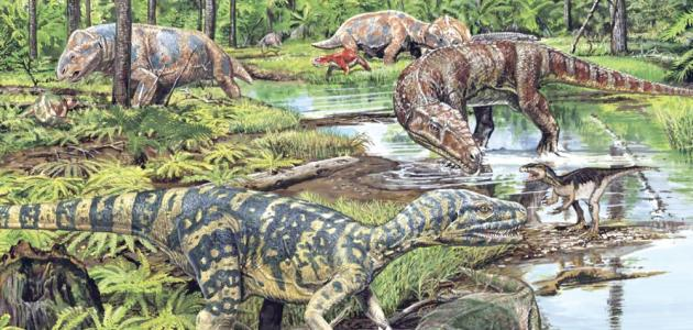 What is the Cretaceous