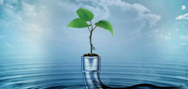 خصائص الماء الفيزيائية والكيميائية
